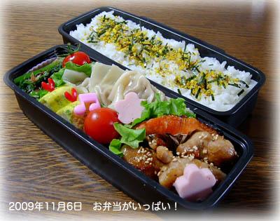 091106お弁当1