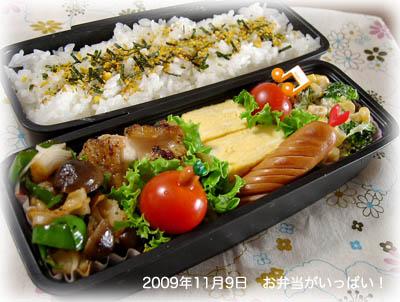 091109お弁当1