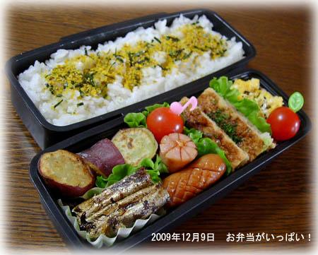 091209お弁当1