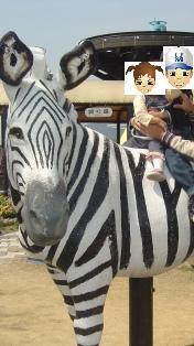 姫路セントラルパーク ~家族でおでかけ!関西の公園・遊び場スポット!~
