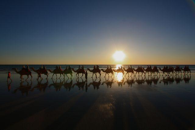 5:3ブルーム駱駝夕日