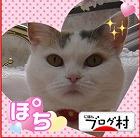 10-ブログ村ジェニ200911