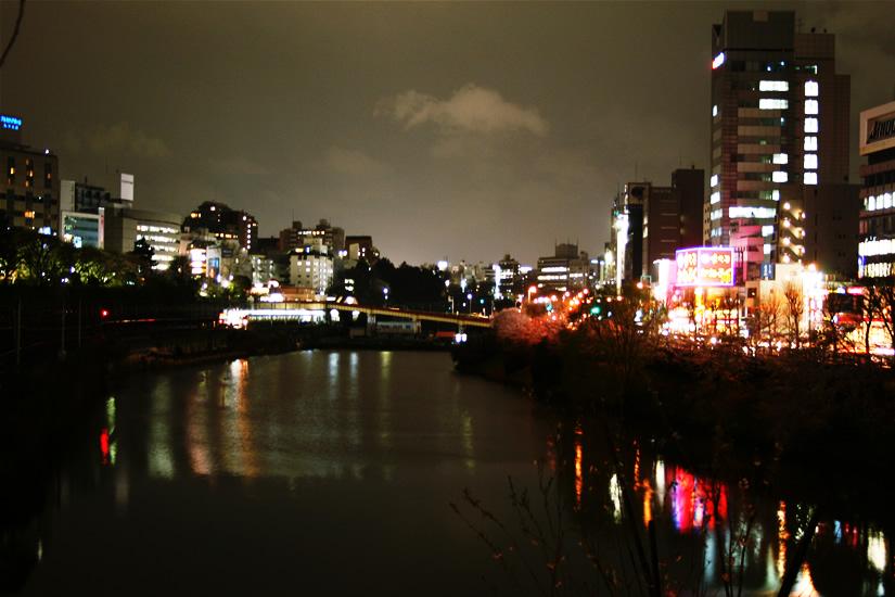 IMG_0874-sakura.jpg