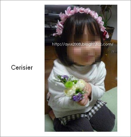P1030790_convert_20100121155843.jpg