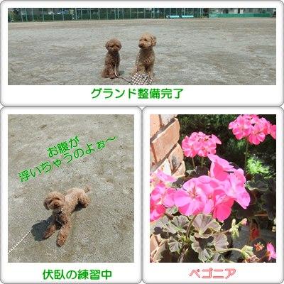 いい天気~☆