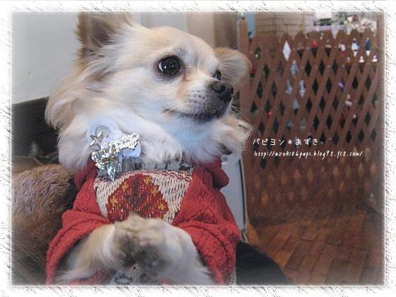 2012-12-06_010.jpg