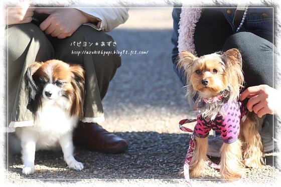 20121125_IMG_4650.jpg