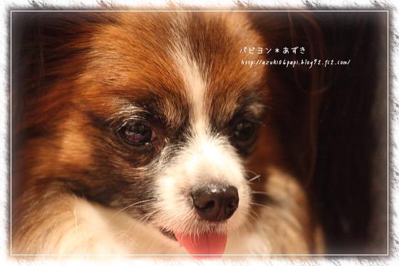 20121222_IMG_25.jpg