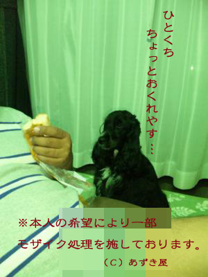 azuki148.jpg