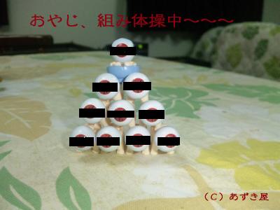 azuki248.jpg