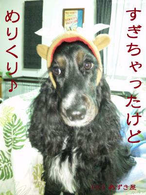 azuki298.jpg