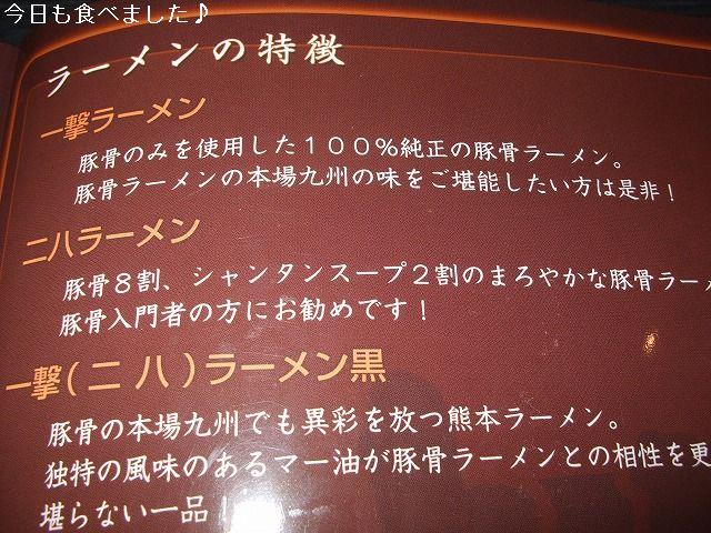 10052103.jpg