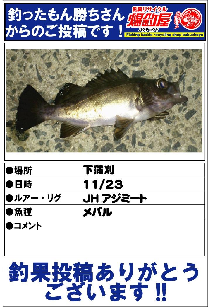 釣ったもん勝ちさん2012112302