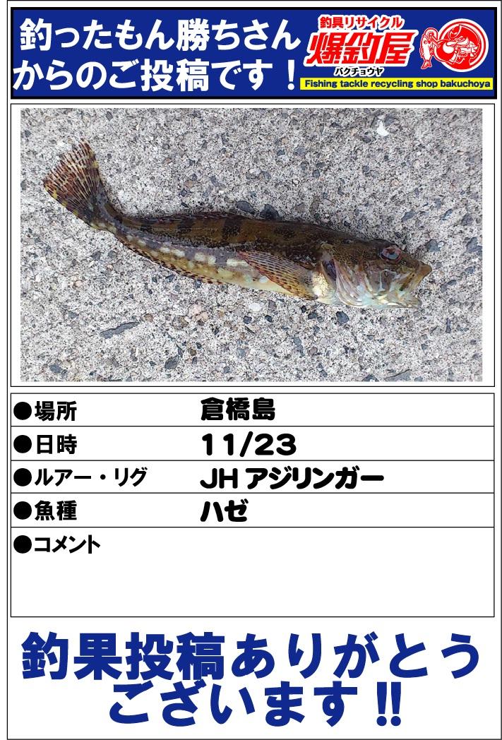 釣ったもん勝ちさん20121123