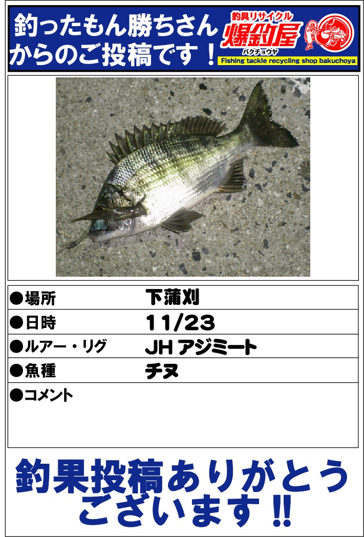 釣ったもん勝ちさん2012112303