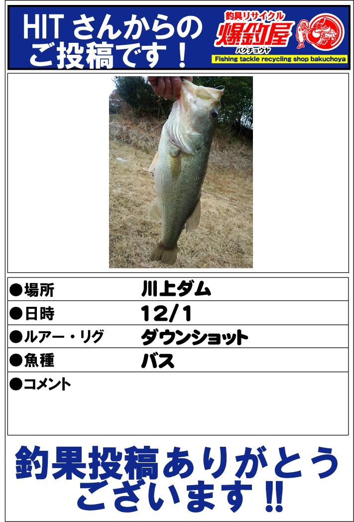 HITさん20121205