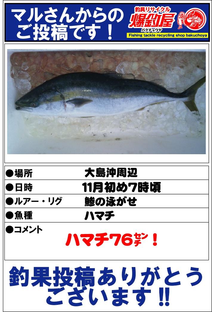 マルさん20121205