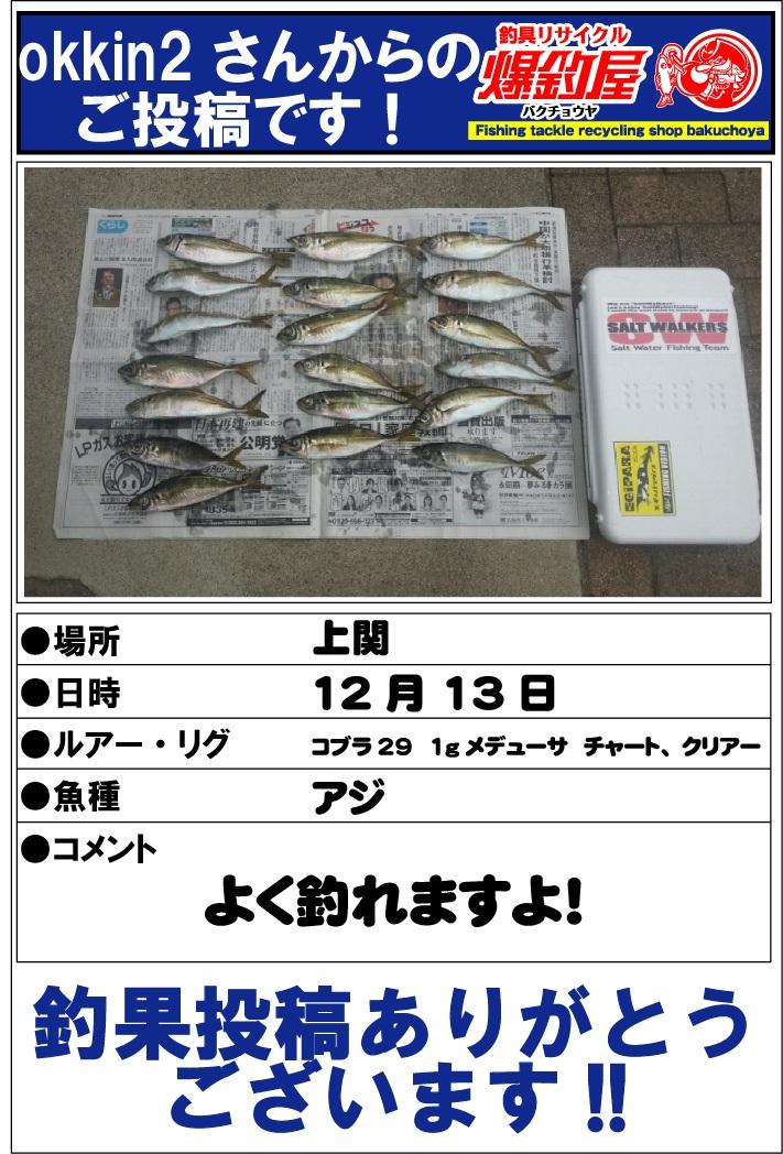 okkin2さん20121221