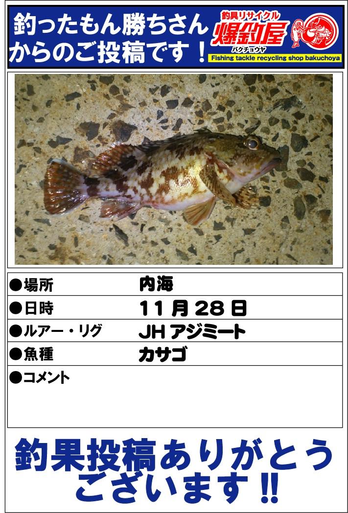 釣ったもん勝ちさん20121221