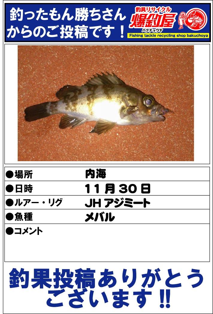 釣ったもん勝ちさん20121223