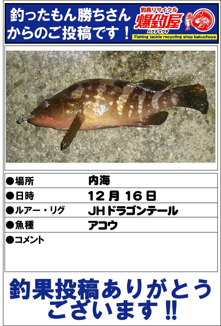 釣ったもん勝ちさん2012123101