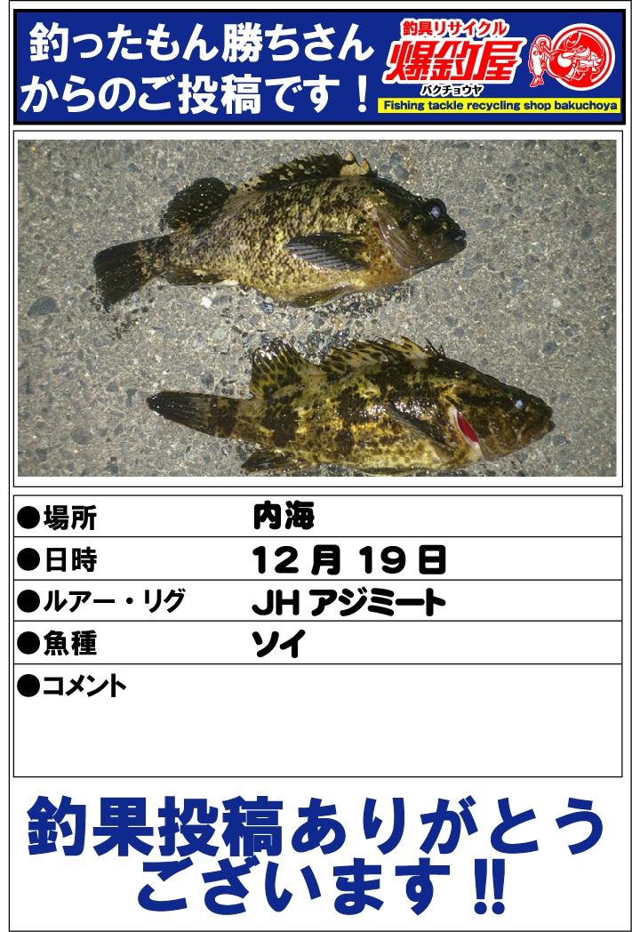 釣ったもん勝ちさん2012123102
