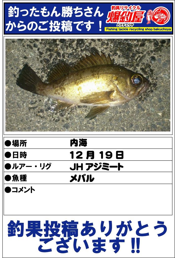 釣ったもん勝ちさん2012123103