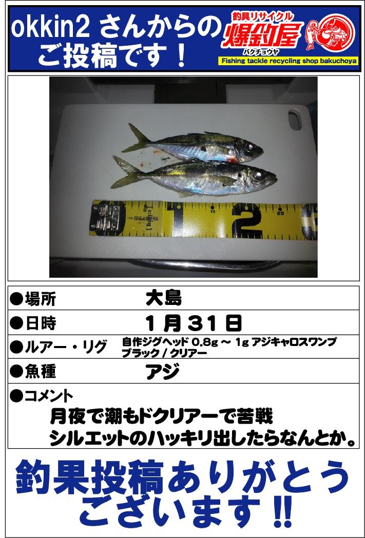 okkin2さん20130205