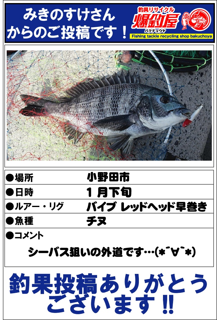 みきのすけさん20130117