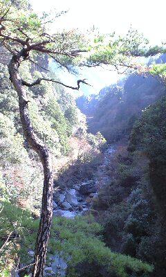 中津渓谷 10