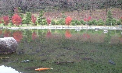 本谷公園 6
