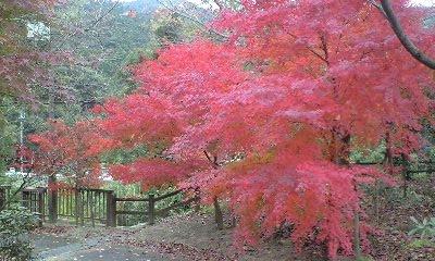 本谷公園 2