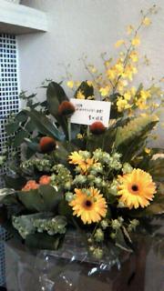 大きなお花