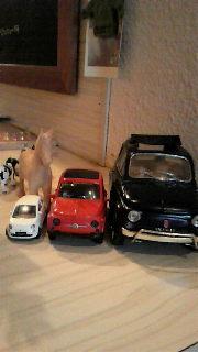 FIAT500たち。