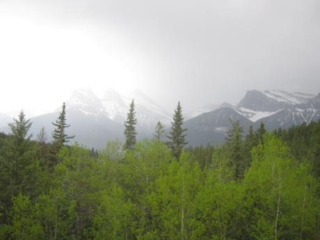 20100518-9.jpg