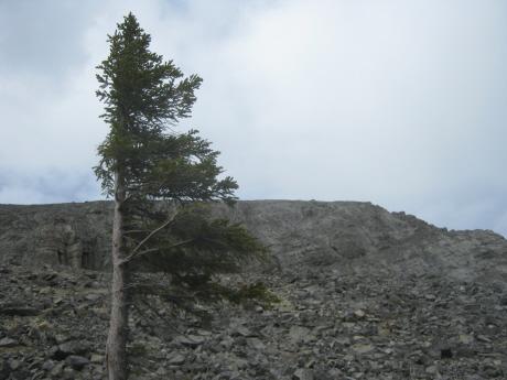 20100525-1.jpg