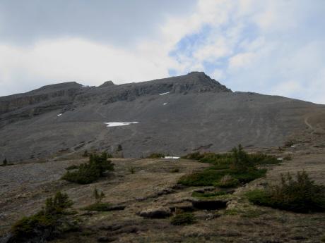 20100525-4.jpg