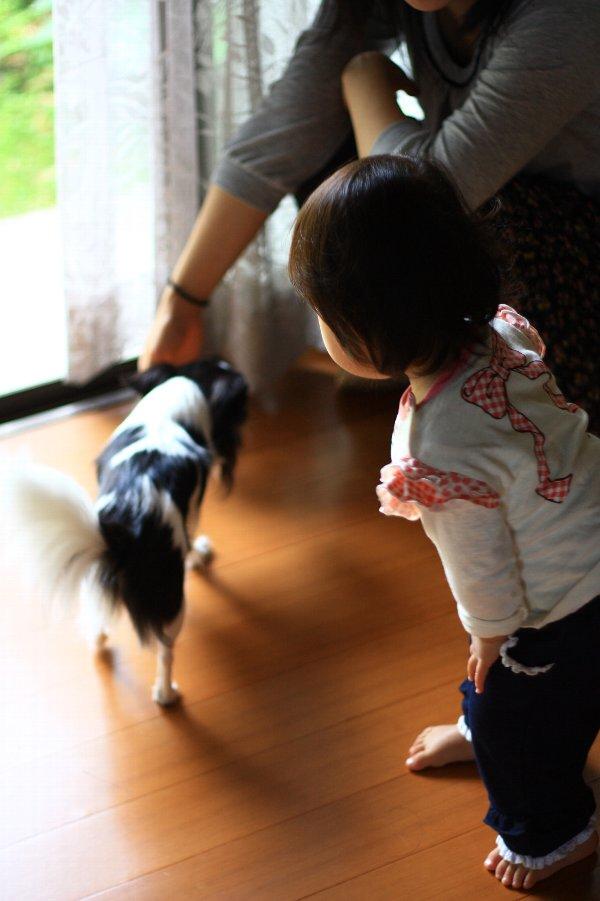 20110707_01.jpg