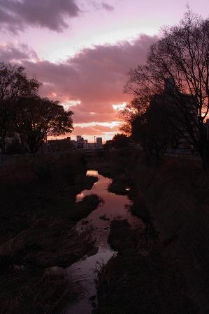20111219_03.jpg