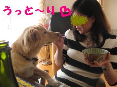 お肉_convert_20091229140506