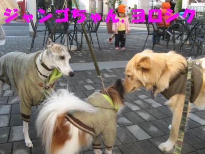 ヨロシク2_convert_20100106101138