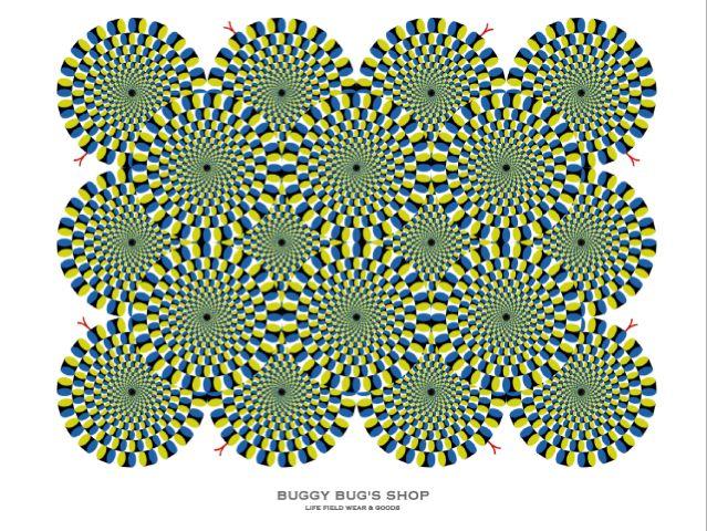 100804-05.jpg