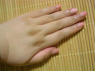 s-SANY0887_20100103185223.jpg