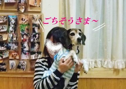 コピー ~ DSCF9561