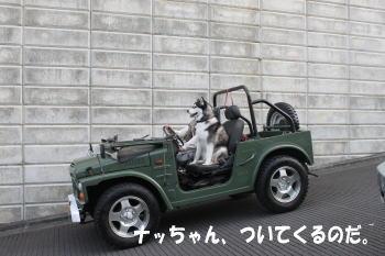 20100327_4.jpg