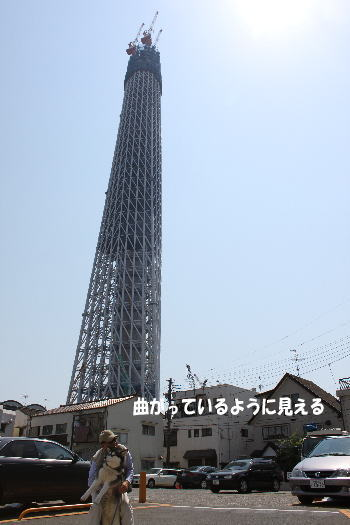 20100502_8.jpg