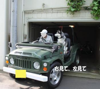 20100504_3.jpg