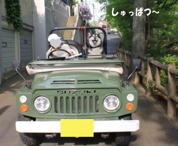 20100504_5.jpg
