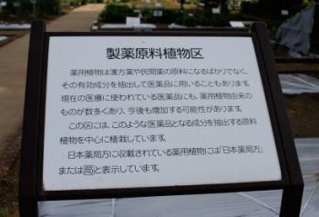 20100522_13.jpg
