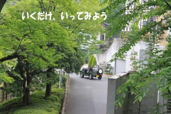 20100523_3.jpg